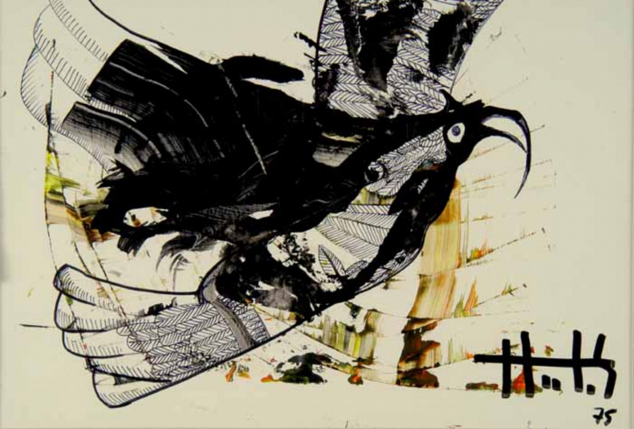 JUDIKAEL oiseau noir