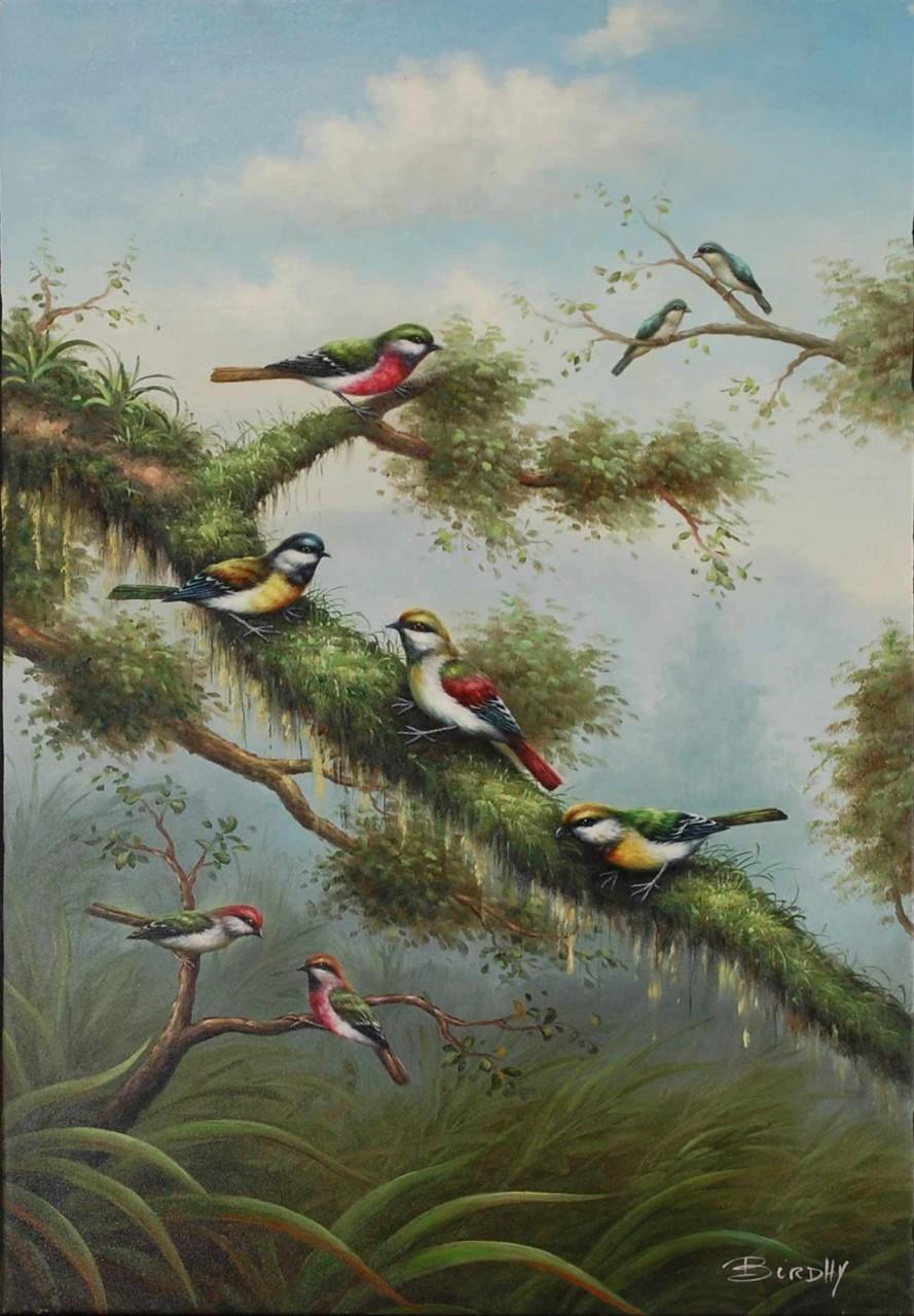 Birdhy oiseaux