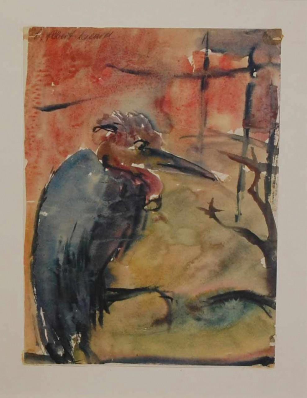 Cassard Albert oiseau